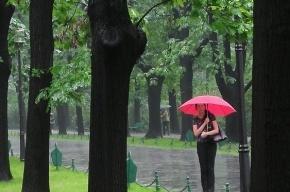 Грозы и ураганный ветер снова надвигаются на Петербург