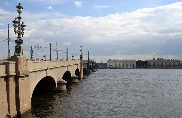 Двое мужчин прыгнули с Троицкого моста, выбрались на берег и ушли