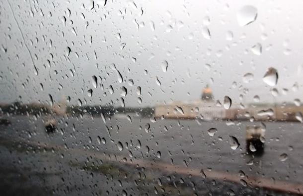 Жару в Петербурге сменят ливни с грозами и ветром