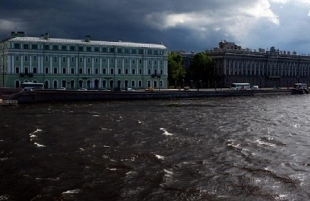 Ветер усилится в Петербурге после обеда