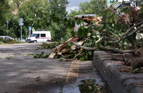 Ураган разрушил более 20 домов в Подмосковье
