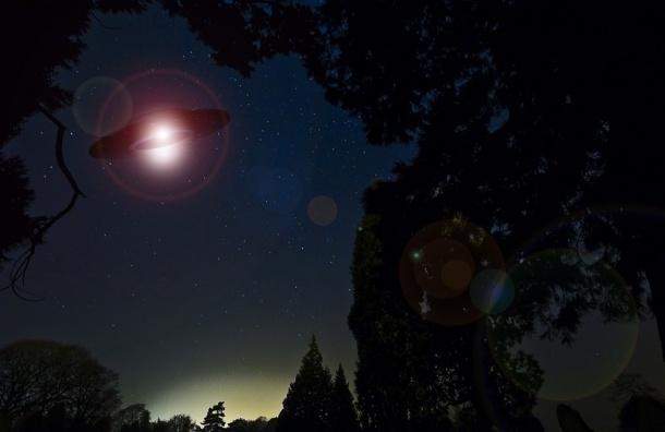 Светловолосые инопланетяне в испуге убежали от полицейского в Британии