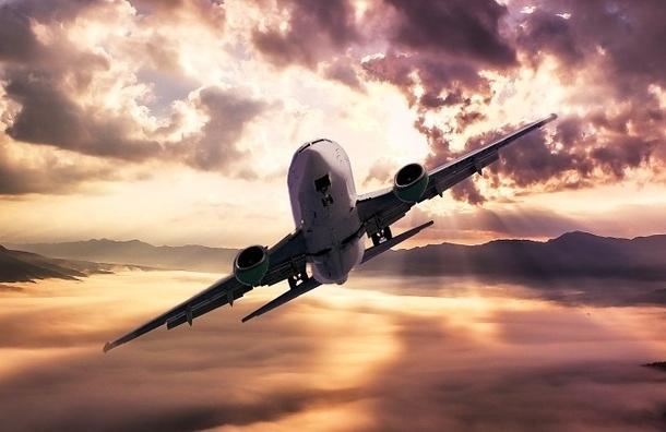 Самолет экстренно сел вИндии из-за дебошира, кричавшего девизы ИГИЛ