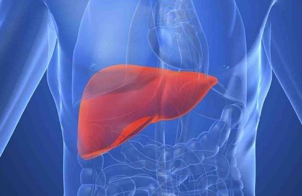 Как не поддаться гепатиту