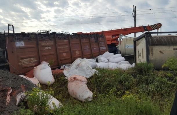 Поезд сошел с рельсов в Нижегородской области из-за провала грунта