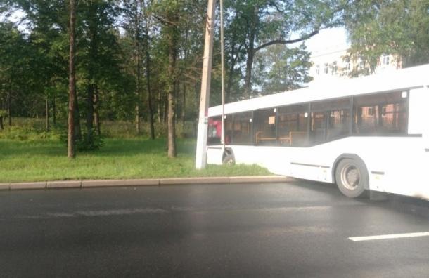 Два автобуса с пассажирами столкнулись в Петергофе