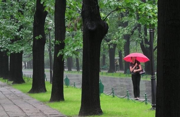МЧС предупреждает о грозе в Петербурге