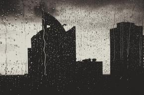 МЧС предупреждает о грозах и сильном ветре в Петербурге