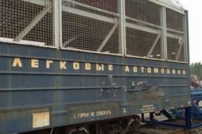 Петербургские воры разобрали на запчасти восемь иномарок прямо с автовоза