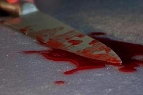 Житель Самары убил своих малолетних детей и супругу, а потом покончил с собой