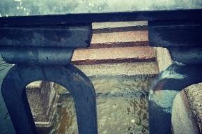 Уровень воды в Неве поднялся почти на 1 метр
