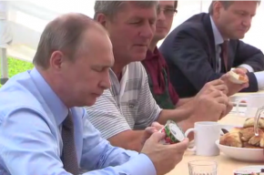 Путин недоволен, что фермеры вместо йогуртов из клюквы делают водку