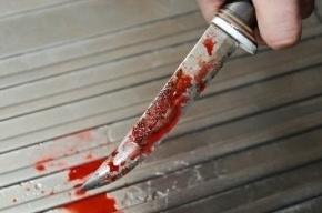 Петербуржец двумя ударами ножа убил знакомого