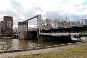 Гигантский сом прогнал водолазов в Калининграде