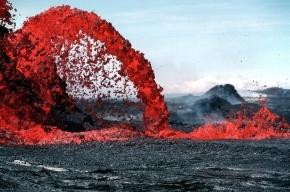 Биологи нашли в вулканах «колыбель жизни»