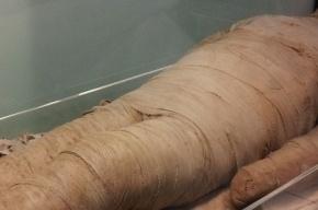 Древнюю мумию в «кроссовках Adidas» нашли на Алтае