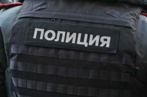 Полицейский обезвредил вооруженного хулигана в петербургском метро