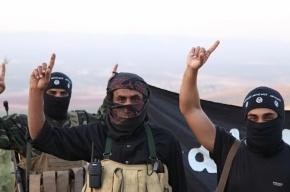 США не берет Россию воевать с ИГИЛ