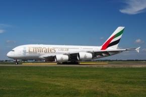 Самолет Emirates экстренно сел в Москве из-за заболевшего пассажира
