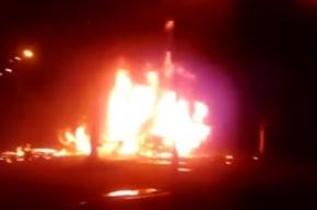 Поросята сгорели заживо в фуре под Тверью