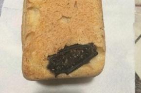 Пенсионер купил в магазине хлеб с мертвой летучей мышью