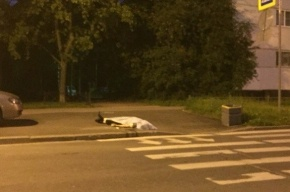 Мужчина скончался у пешеходного перехода на улице Кустодиева
