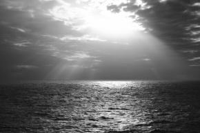 Ученые нашли жизнь в глубинах Черного моря