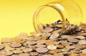 Желание уехать за границу заставило петербурженку выплатить долг в 1,5 млн рублей