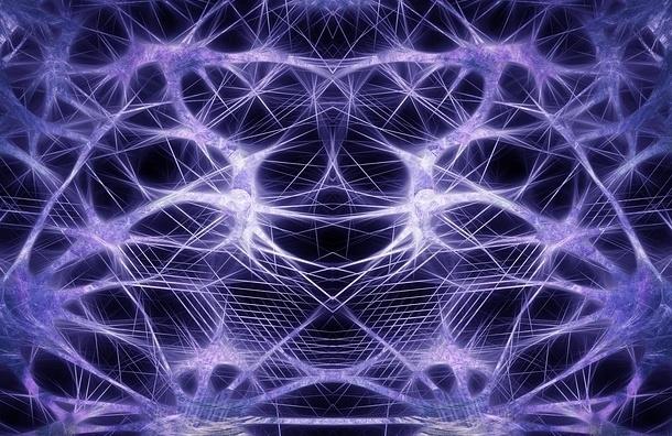 Ученые нашли в мозгу новые отделы
