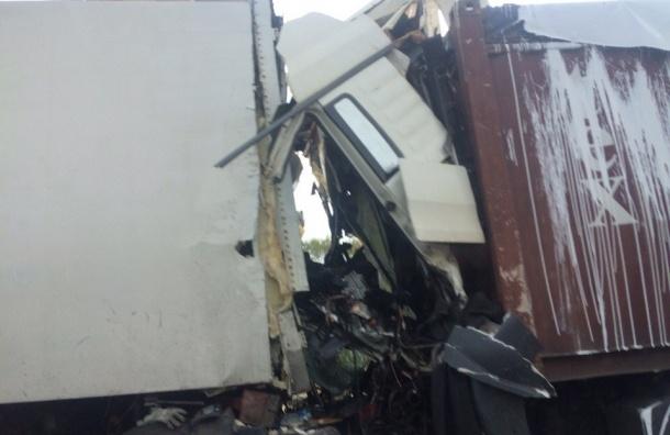 Водитель контейнеровоза погиб в аварии на Московском шоссе