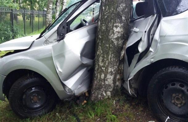 Водитель Ford влетел в дерево на Лахтинском проспекте