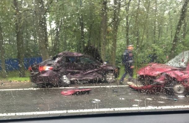 Женщина погибла в смертельной аварии на Санкт-Петербургском шоссе