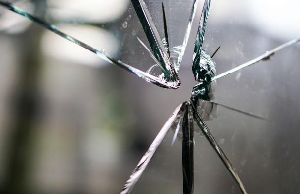Насильника, забиравшегося к жертвам через форточку, задержали в Петербурге