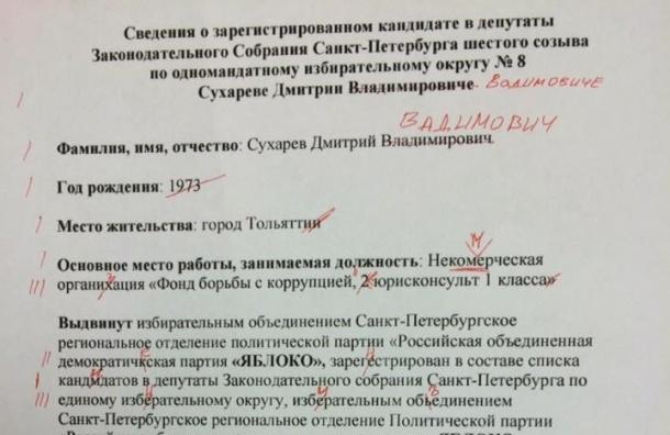 Горизбирком уволил сотрудника, который допустил 15 ошибок в сведениях о кандидате «Яблока»