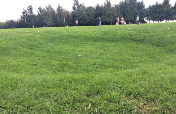 Земля провалилась в парке 300-летия