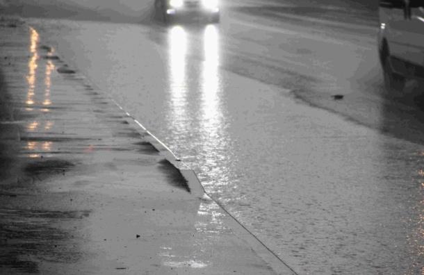 Спасатели просят петербуржцев остаться дома из-за дождей