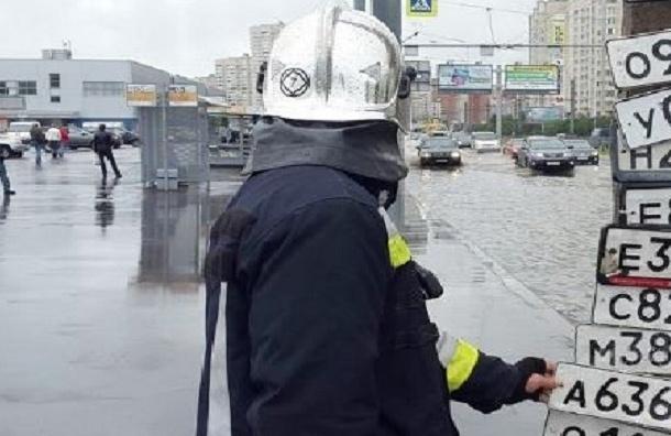 Госномера машин, потерянные в потопе, вывесили на петербургских столбах