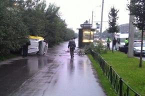 Такси улетело в кусты на Бухарестской