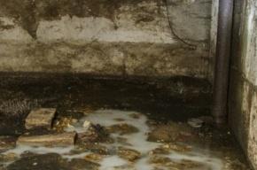 Труп мужчины средних лет нашли в подвале на 7-ой Советской улице