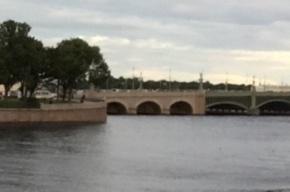 Спасатели ищут в Неве спрыгнувшего с Троицкого моста человека