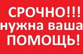 Нужна помощь для спасения дочери петербургского журналиста Александра Жабского