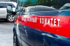 Иностранец в Петербурге предлагал пятикласснице деньги за секс