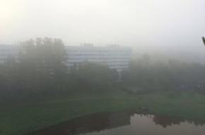 Туман опустился на Петербург