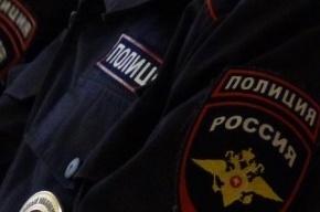 Школьницу изнасиловали в съемной квартире на Краснопутиловской