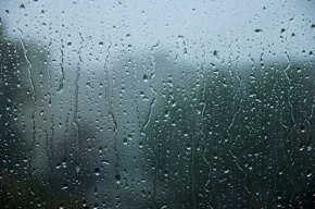 Ливни с грозами и ветром обрушатся на Ленинградскую область