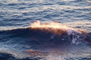 Ветер поднимет метровую волну на Финском заливе