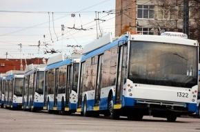 Бесплатный Wi-Fi появился в троллейбусах Петербурга