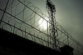 Турецкие власти освободят около 38 тысяч заключенных
