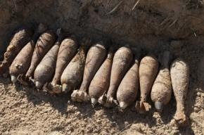 Найдены 73 мины на севере Петербурга