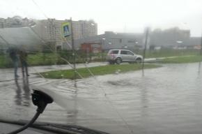 Проезжую часть проспекта Стачек затопило